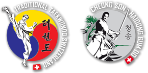 Taekwondo Schwertkampf Logo